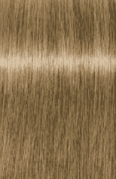 Schwarzkopf Professional, Краска для седых волос Igora Royal Absolutes Игора Роял Абсолют (палитра 24 цвета), 60 мл 9-10 Блондин сандрэ натуральный