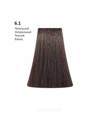 Купить BB One, Перманентная крем-краска Picasso Colour Range без аммиака (76 оттенков) 6.1Ash Natural Dark Blond/Пепельный Натуральный Темный Блонд