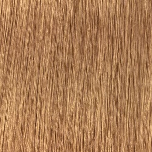 Indola, Индола краска для волос профессиональная Profession, 60 мл (палитра 141 цвет) 9.3 блондин золотистый