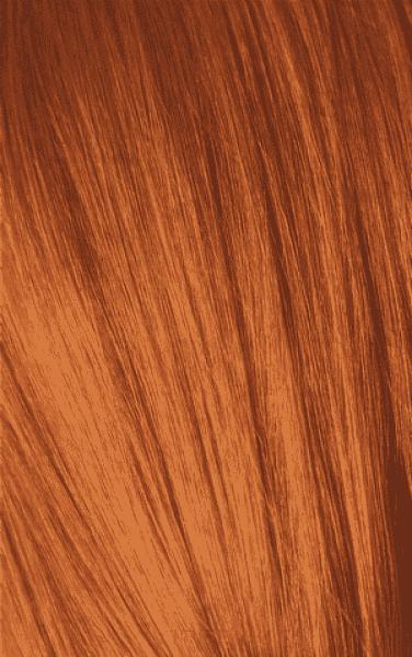 Schwarzkopf Professional, Игора Оттеночный мусс для волос Igora Color Expert Mousse, 100 мл (13 тонов) IGORA COLOR EXPERT Мусс для волос 8-77 Светлый русый медный экстра, 100 мл мусс тонирующий тон 1 sand soft touch matt mousse essence