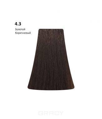 Купить BB One, Перманентная крем-краска Picasso Colour Range без аммиака (76 оттенков) 4.3Golden Brown/Золотой Коричневый