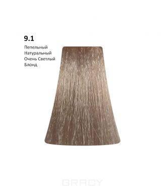 Купить BB One, Перманентная крем-краска Picasso Colour Range без аммиака (76 оттенков) 9.1Ash Natural Very Light Blond/Пепельный Натуральный Очень Светлый Блонд