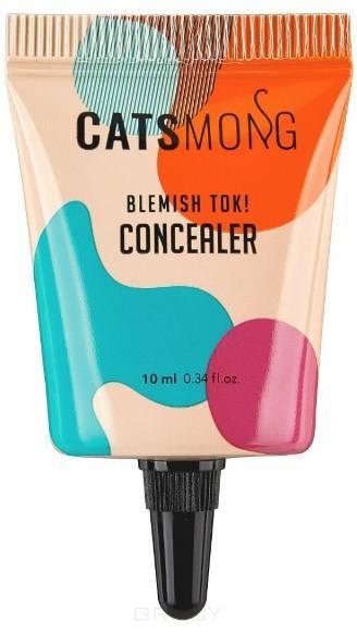 Увлажняющий консилер Blemish Tok Concealer (2 оттенка), 10 мл увлажняющий консилер blemish tok concealer 2 оттенка 10 мл