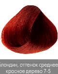Купить Nirvel, Краска для волос ArtX профессиональная (палитра 129 цветов), 60 мл 7-5 Красное дерево средний блондин