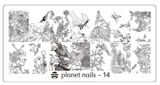 Planet Nails, Пластина для Stamping Nail Art (15 видов) Пластина для Stamping Nail Art - 14 portable stainless steel nail art manicure set nail care tools with nail cutter clipper file scissor eyebrow tweezers