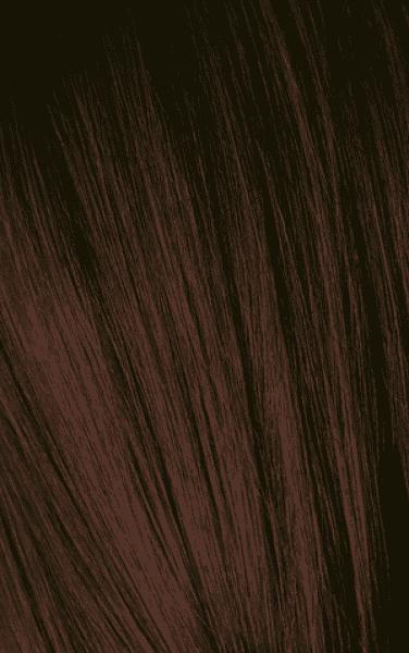 Schwarzkopf Professional, Игора Оттеночный мусс для волос Igora Color Expert Mousse, 100 мл (13 тонов) IGORA COLOR EXPERT Мусс для волос 4-68 Средний коричневый шоколадный красный, 100 мл