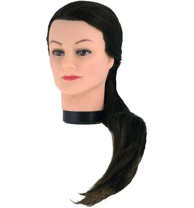 EuroStil Голова учебная 55-60 см + штатив harizma голова учебная шатен 50 см натуральные синтетика h10823