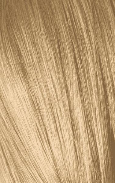 Schwarzkopf Professional, Игора Оттеночный мусс для волос Igora Color Expert Mousse, 100 мл (13 тонов) IGORA COLOR EXPERT Мусс для волос 9,5-4 Светлый блондин пастельный бежевый, 100 мл