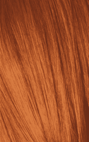 Schwarzkopf Professional, Игора Оттеночный мусс для волос Igora Color Expert Mousse, 100 мл (13 тонов) IGORA COLOR EXPERT Мусс для волос 8-77 Светлый русый медный экстра, 100 мл