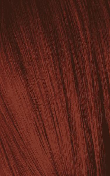 Schwarzkopf Professional, Игора Оттеночный мусс для волос Igora Color Expert Mousse, 100 мл (13 тонов) IGORA COLOR EXPERT Мусс для волос 5-88 Средний коричневый красный экстра, 100 мл
