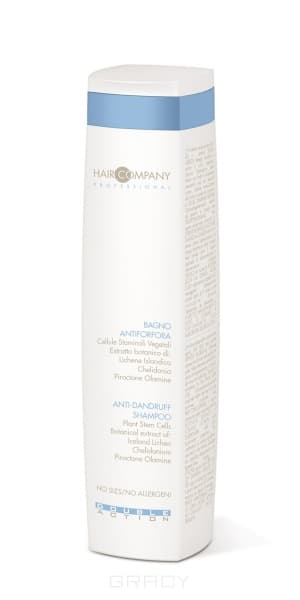 цена на Hair Company Специальный шампунь против перхоти Double Action Anti-dandruff Shampoo, Специальный шампунь против перхоти Double Action Anti-dandruff Shampoo, 250 мл