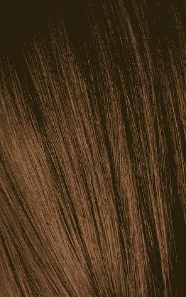 Schwarzkopf Professional, Игора Оттеночный мусс для волос Igora Color Expert Mousse, 100 мл (13 тонов) IGORA COLOR EXPERT Мусс для волос 5-5 Светлый коричневый золотистый, 100 мл