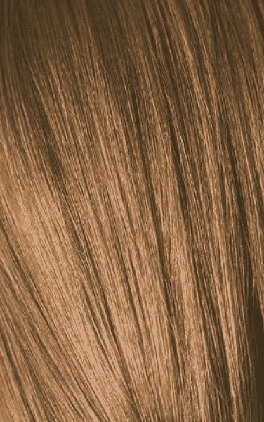 Schwarzkopf Professional, Игора Оттеночный мусс для волос Igora Color Expert Mousse, 100 мл (13 тонов) IGORA COLOR EXPERT Мусс для волос 7-5 Средний русый золотистый, 100 мл