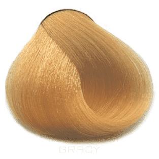 Dikson, Стойкая крем-краска для волос Extra Premium, 120 мл (35 оттенков) 105-21 Extra Premium 9D/SL 9,33 Очень светло-белокурый золотистый яркий